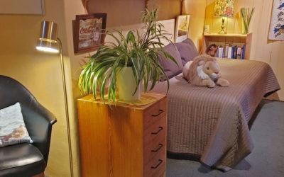Playroom/study/2nd bedroom