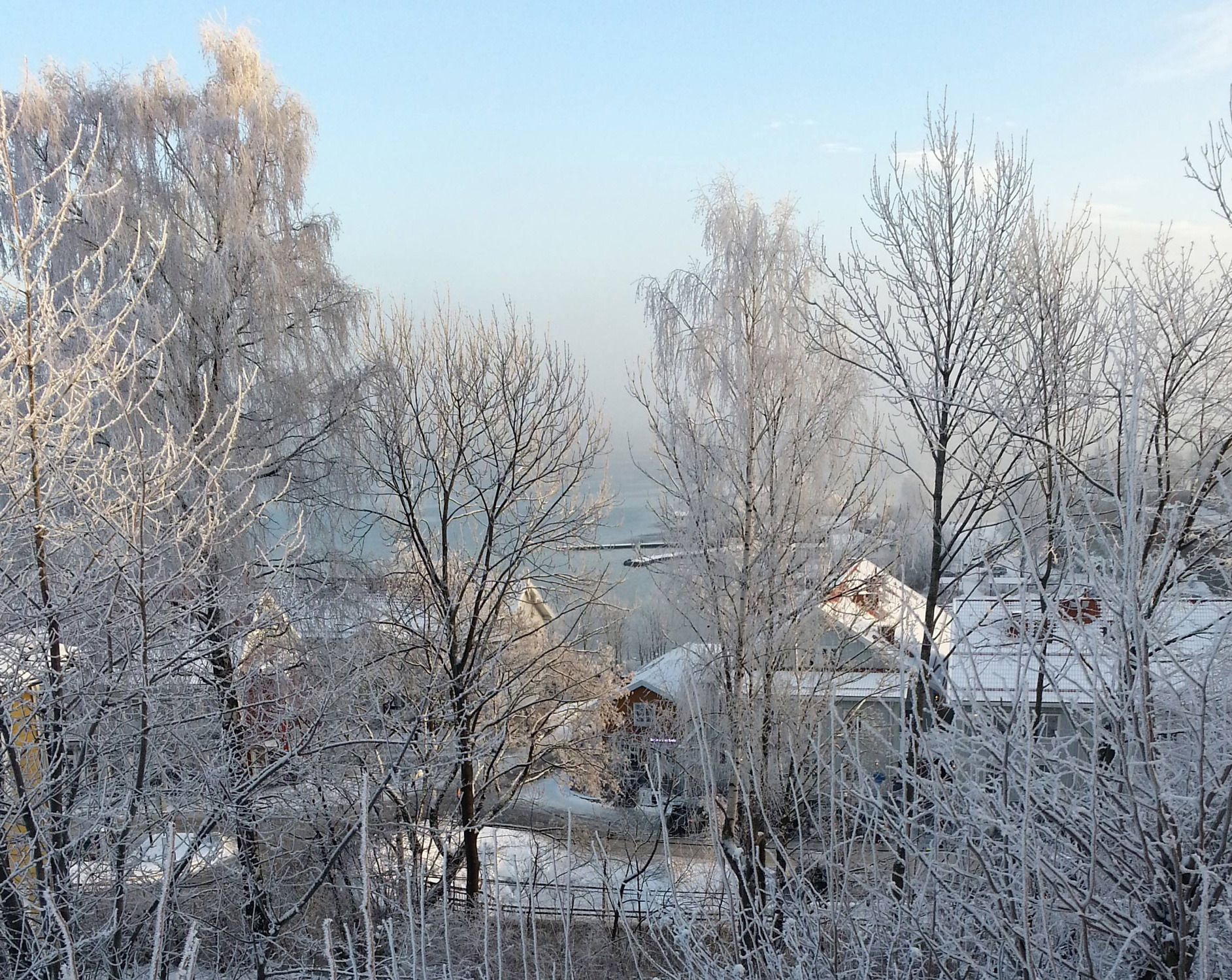 Frosty morning in Vollen
