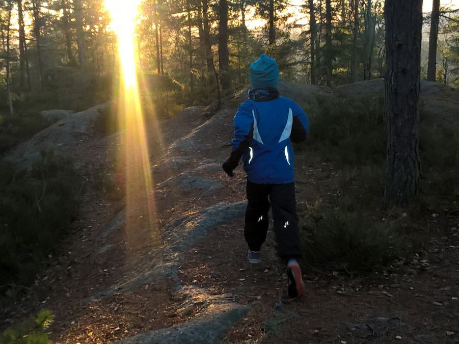 Walking/jogging/skiing in the forests and on the coastal paths