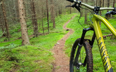 Bicycles: on- and off-road