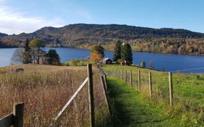 Asker Municipality's Millennium Walk round Sem Lake